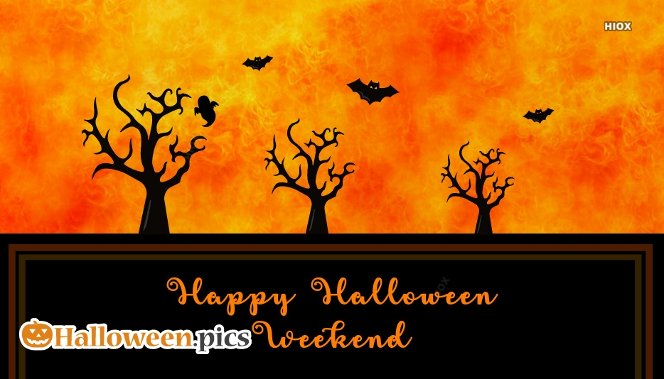 Happy Halloween Images With Bats